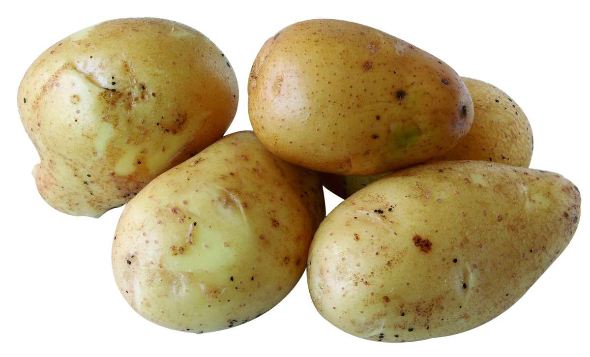 Pomme de terre Monalisa BIO, France