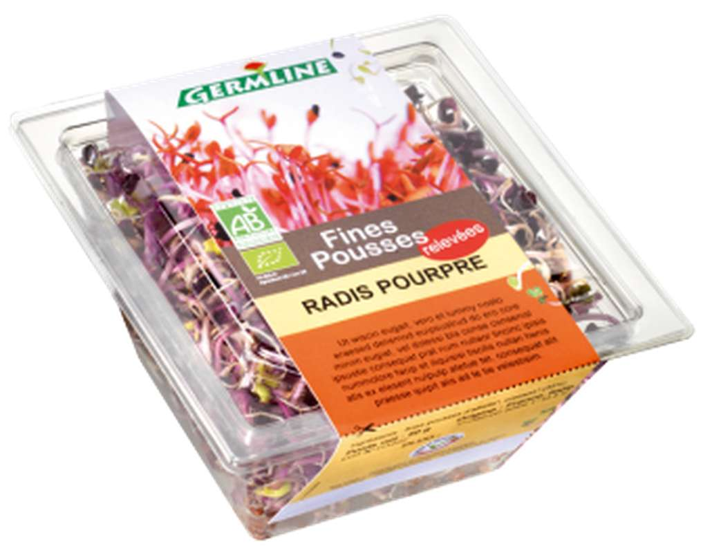 Radis pourpre germé BIO, Germline (40 g)