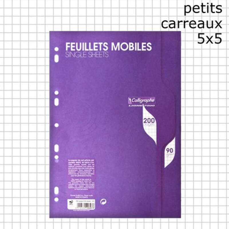 200 pages copies simples petits carreaux A4 perforées, Calligraphe