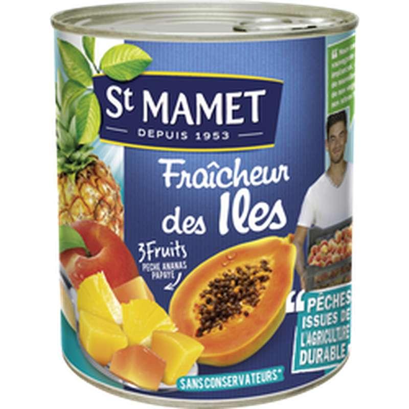 Fraicheurs des îles pêche ananas et papaye, St Mamet (475 g)