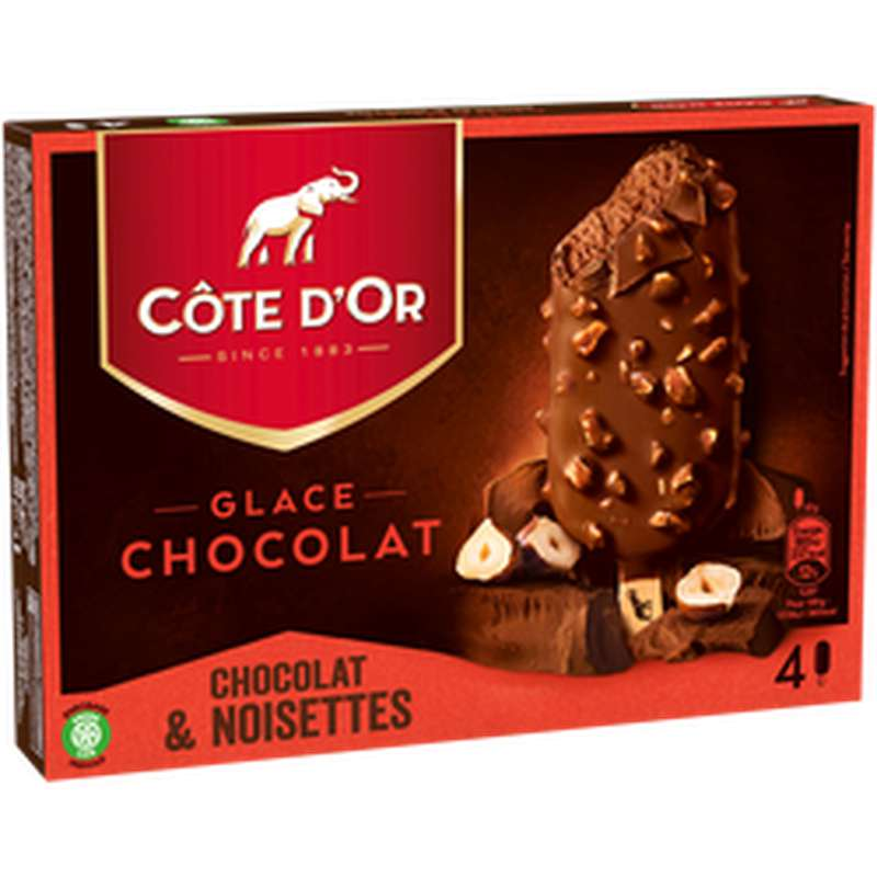 Glace Chocolat au lait Noisette, Côte D'Or (260 g)