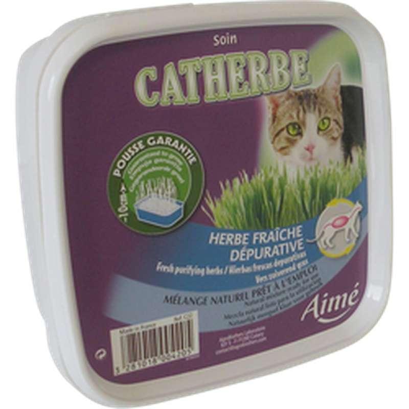 Boîte d'herbe à chat, Aimé (x 1)