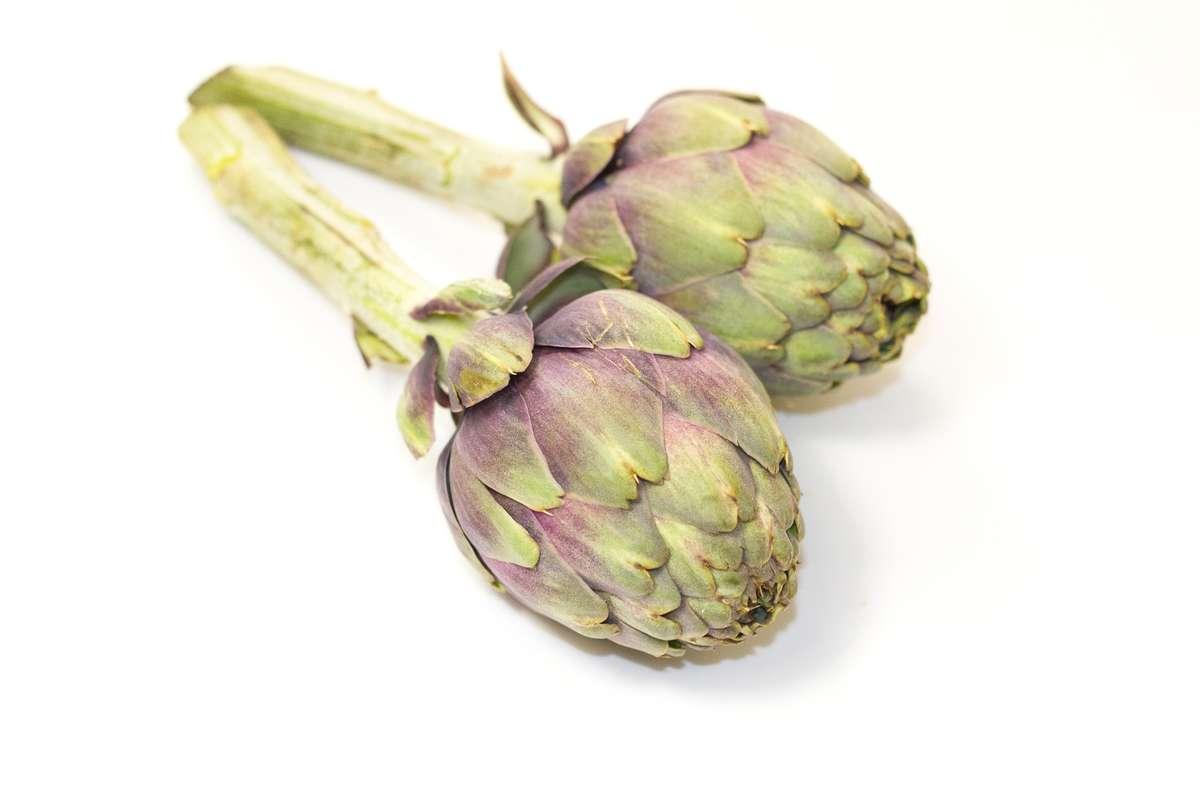 Artichaut poivrade (bouquet de 5-6 têtes), Espagne