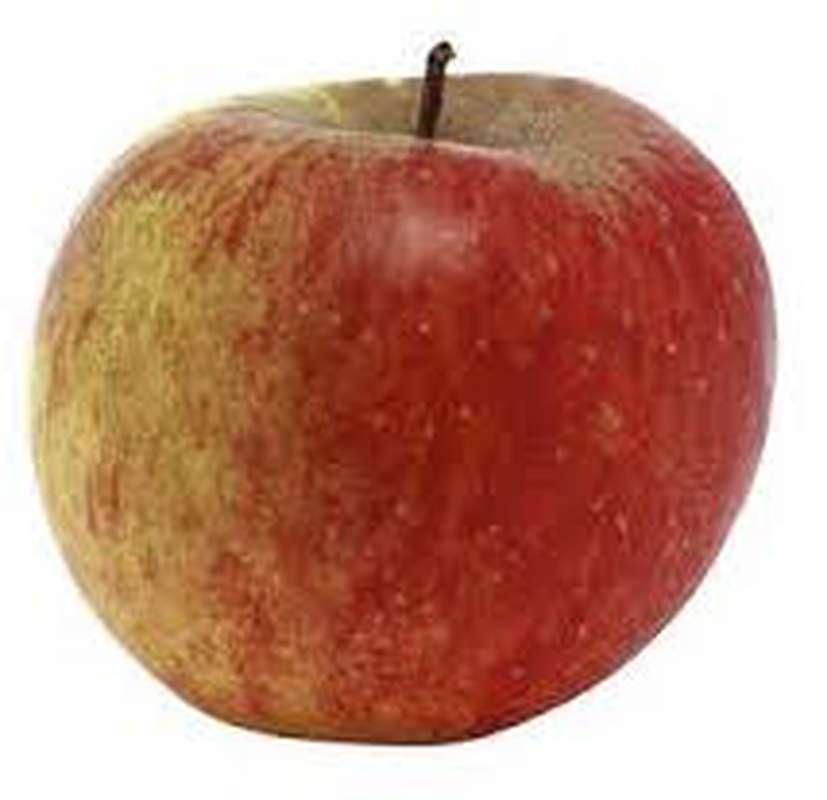Pomme bicolore Ariane BIO (petit calibre), France