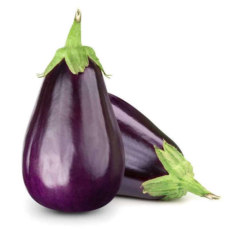Aubergine demi longue violette BIO, Espagne