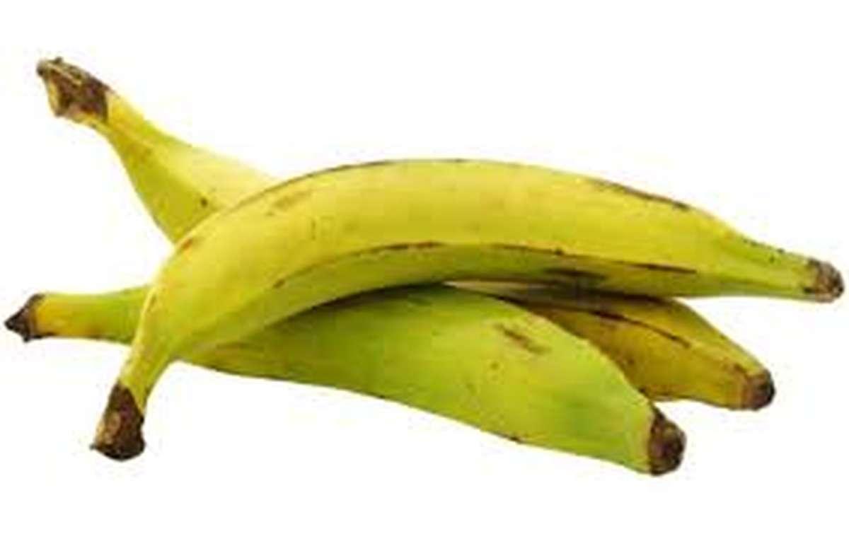 Banane plantain, Equateur