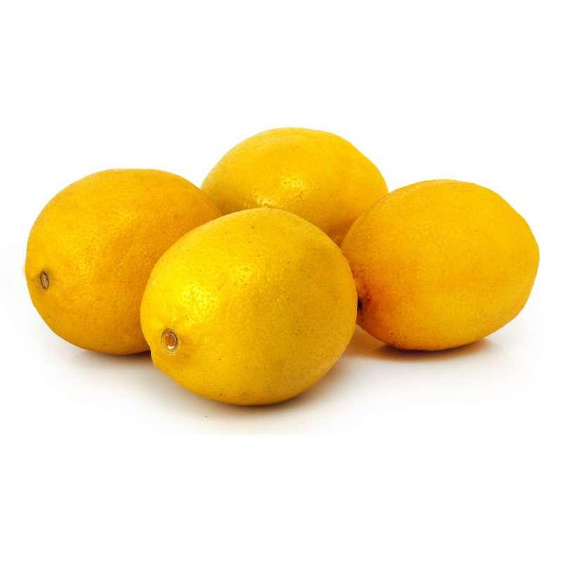 Barquette de citron jaune BIO (x 4, environ 500 g), Espagne