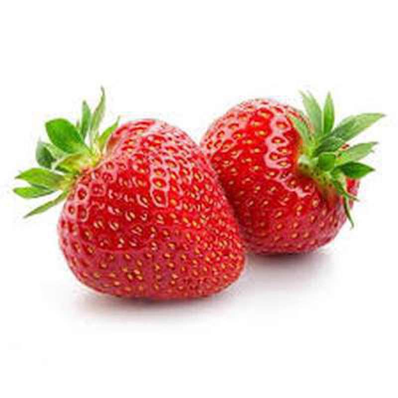Barquette de fraises Charlotte (500 g), France