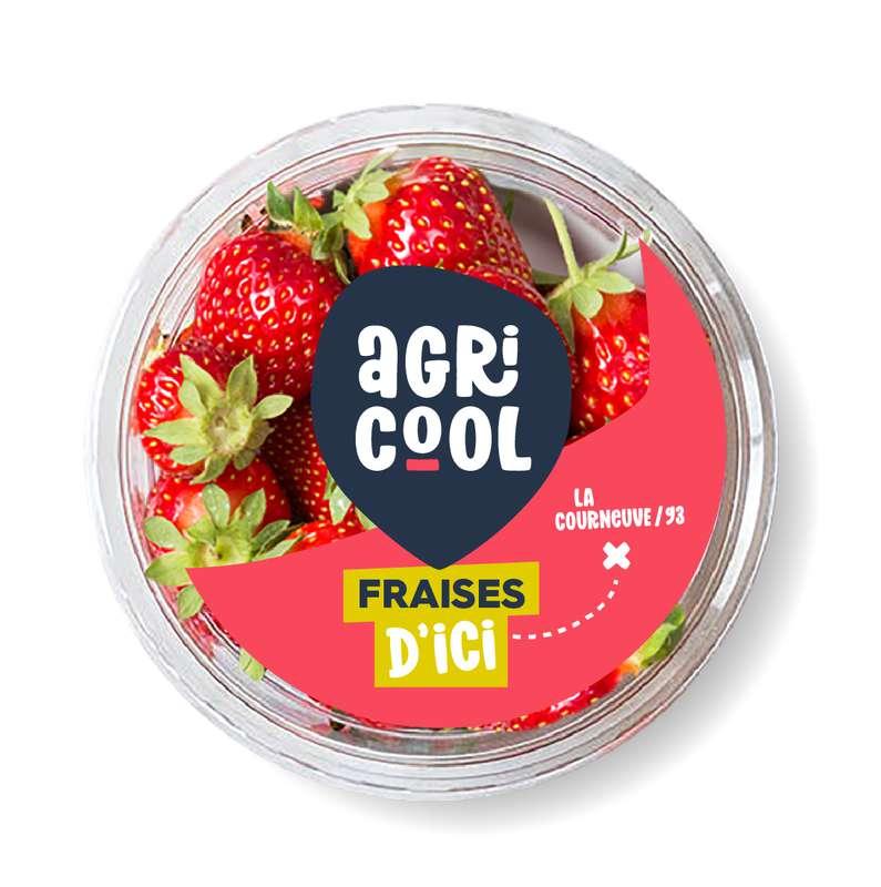 Barquette de fraises locales et sans pesticides, Agricool (125 g), France