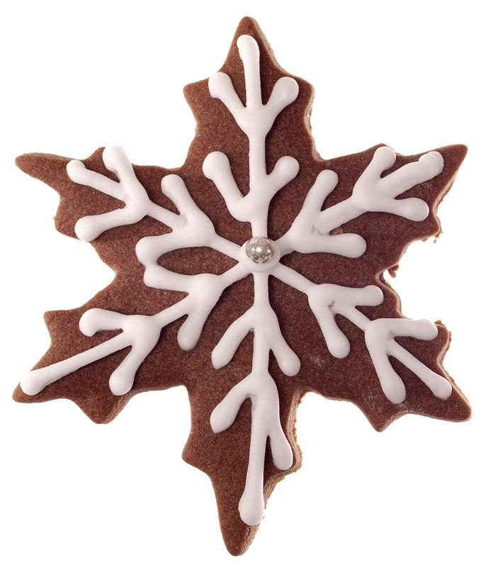 Biscuit Flocon de neige au chocolat (25 g)
