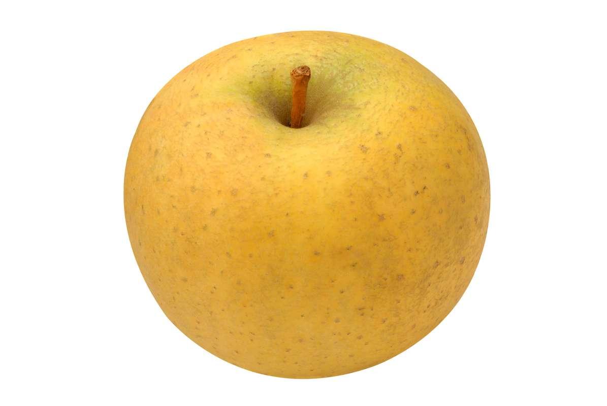 Pomme jaune Belchard - Chanteclerc BIO (calibre moyen), France