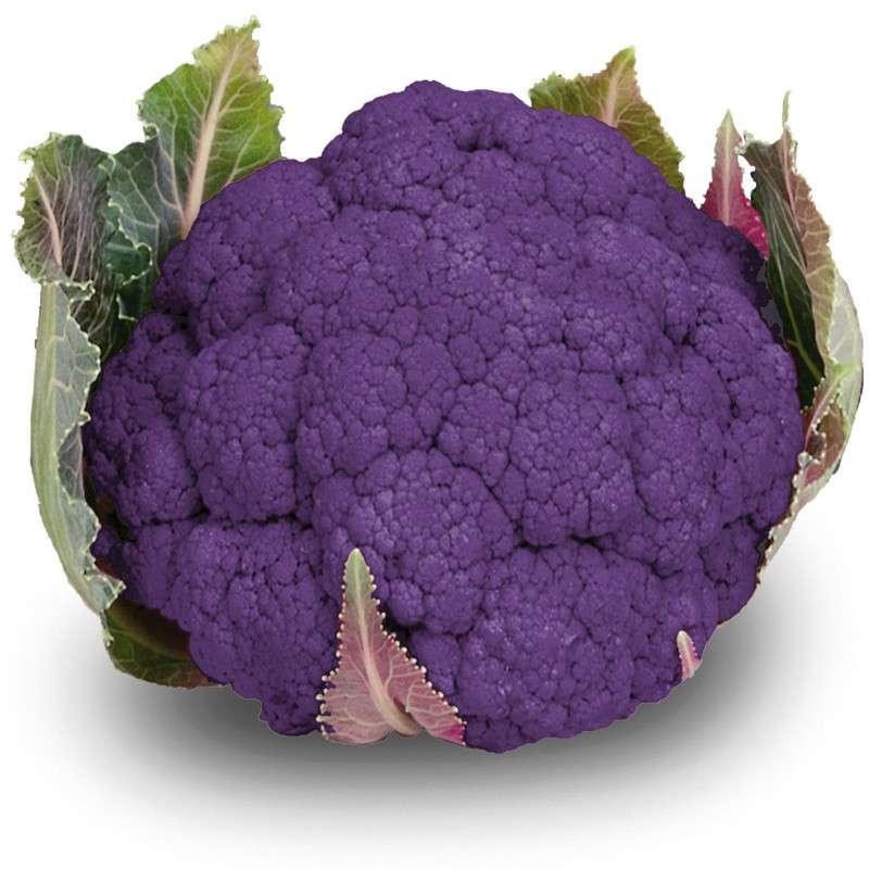 Chou-fleur violet BIO (calibre moyen), France