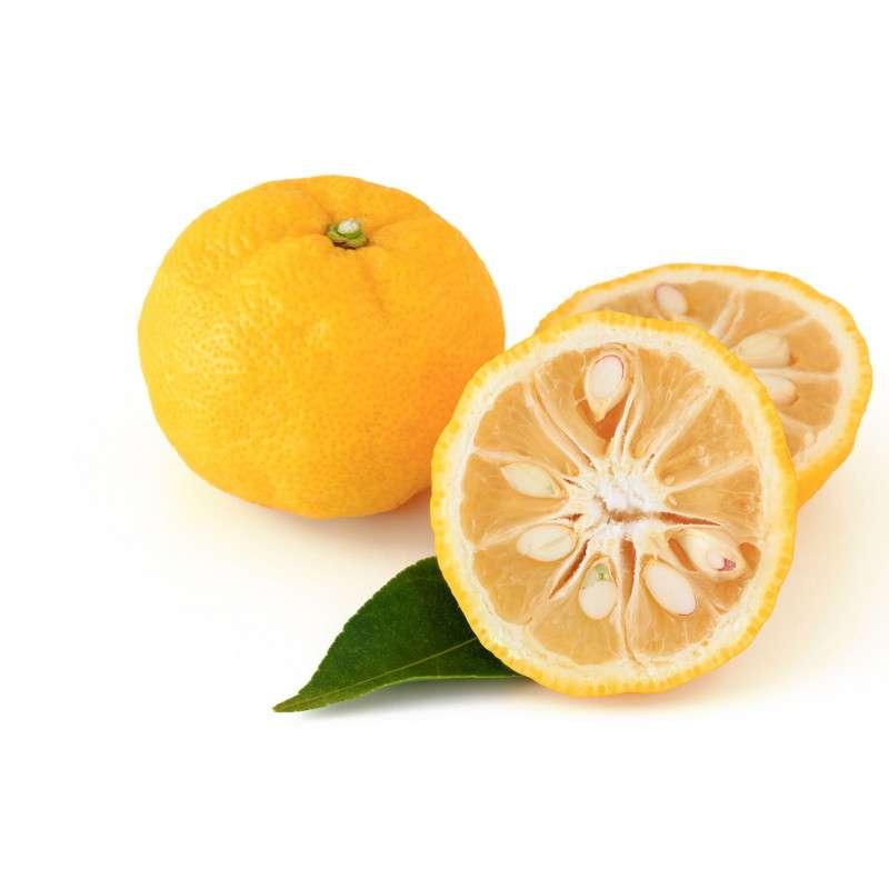 Citron yuzu BIO (x 2), France