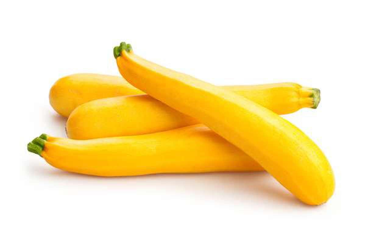 Courgette jaune (calibre moyen), Espagne