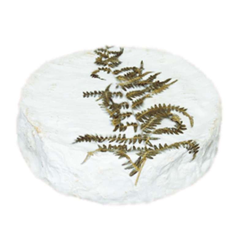 Fougerus (environ 250 g)