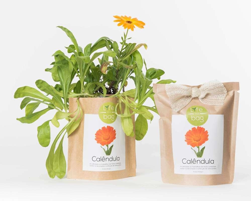 Grow Bag Calendula, Life In a Bag (300 g)