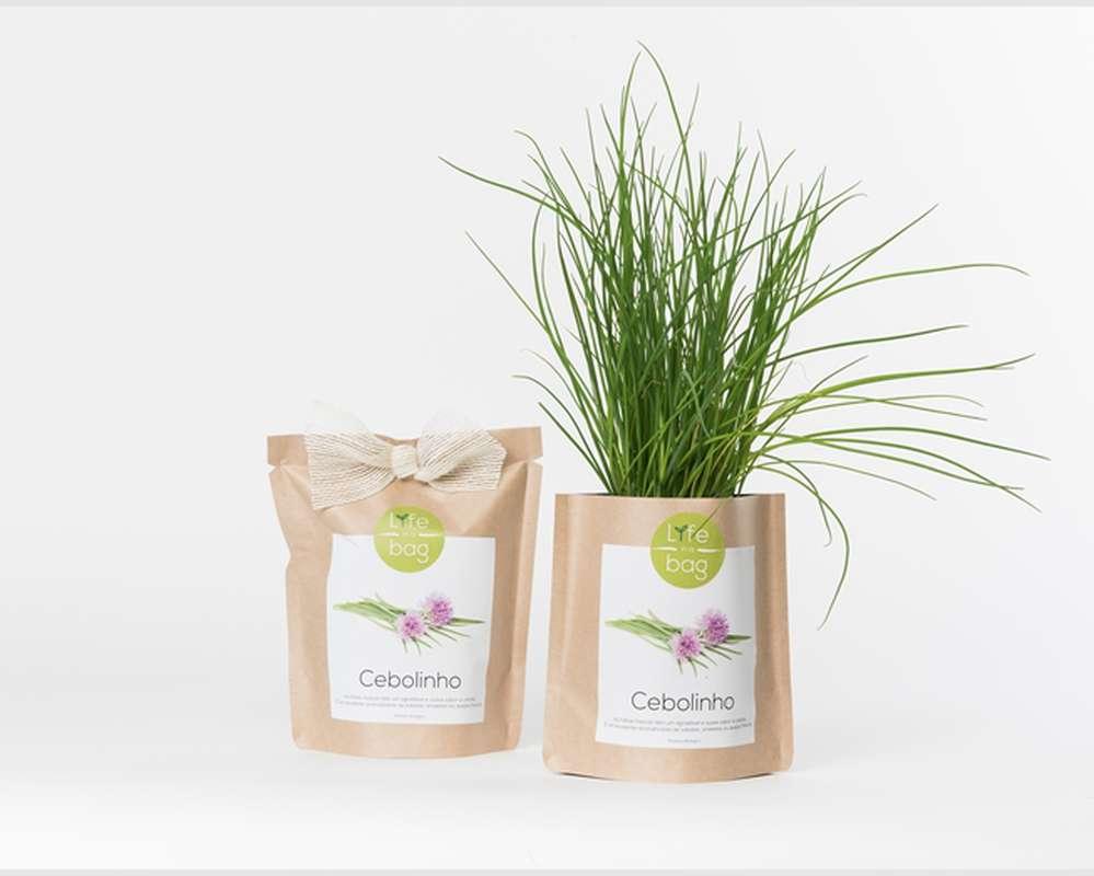 Grow Bag Ciboulette, Life In a Bag (300 g)