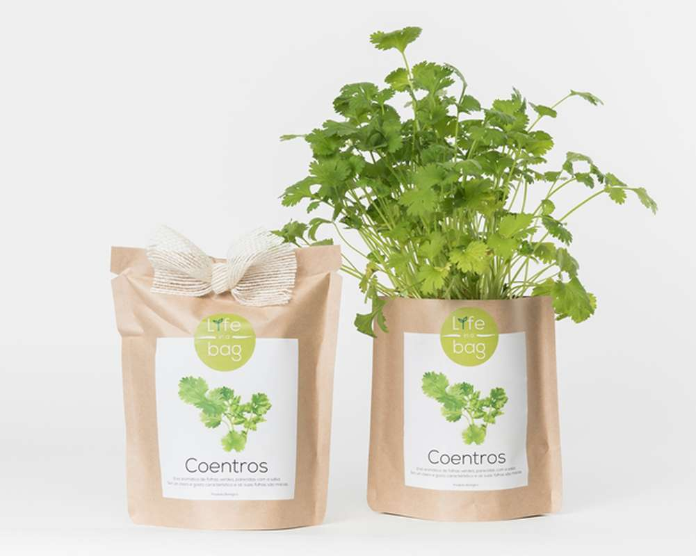 Grow Bag Coriandre, Life In a Bag (300 g)