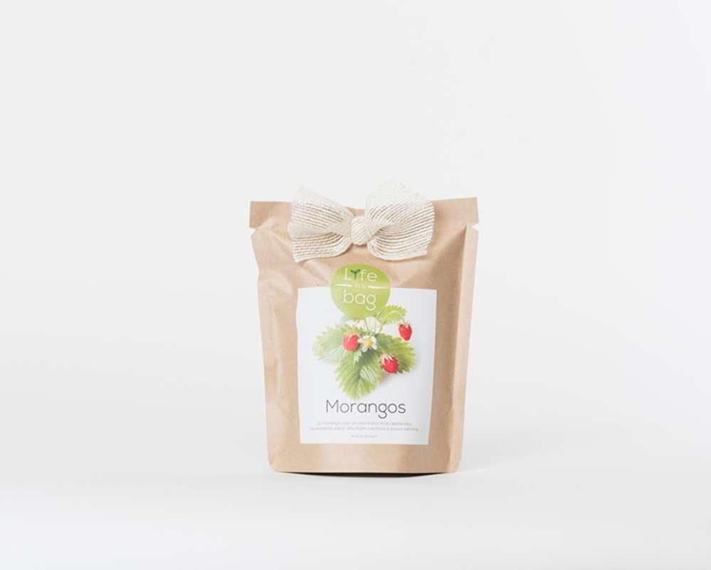 Grow Bag Fraises, Life In a Bag (300 g)