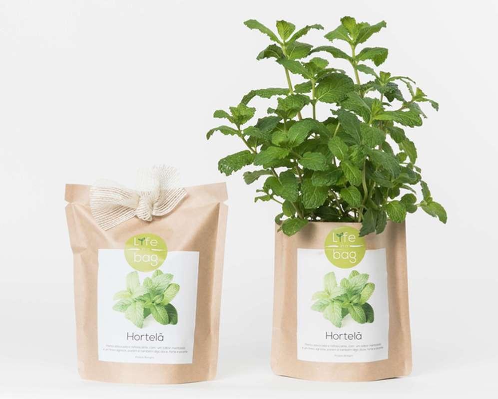 Grow Bag Menthe, Life In a Bag (300 g)