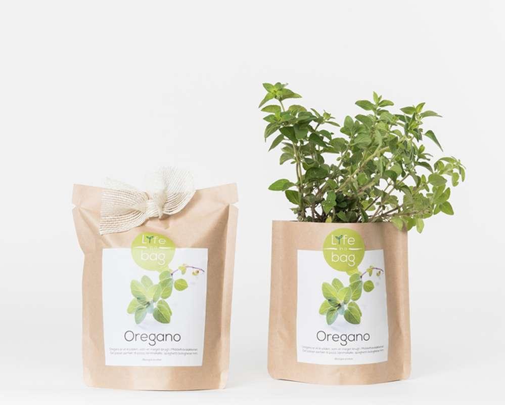 Grow Bag Origan, Life In a Bag (300 g)