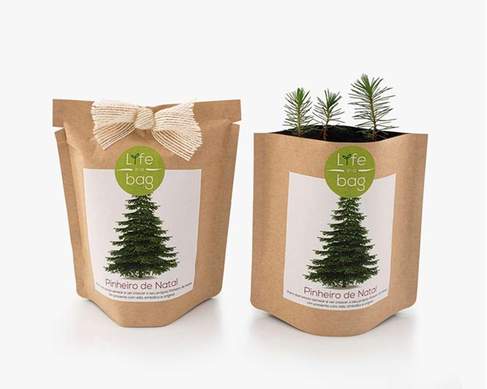 Grow Bag Sapin de Noël, Life In a Bag (300 g)