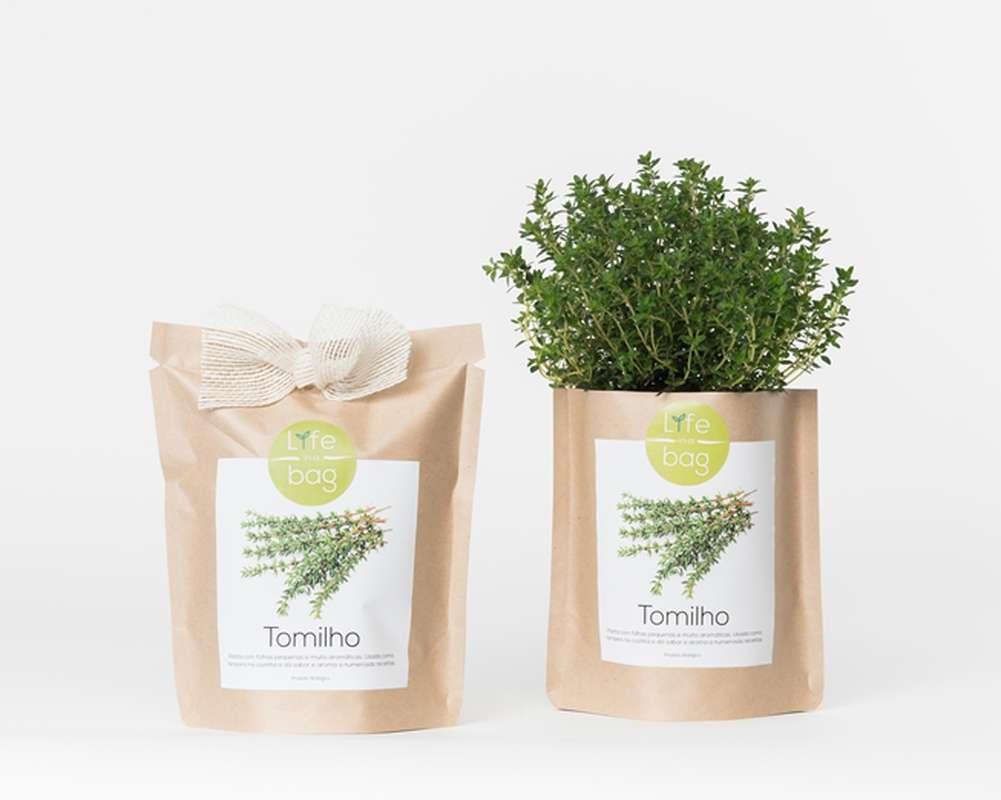 Grow Bag Thym, Life In a Bag (300 g)