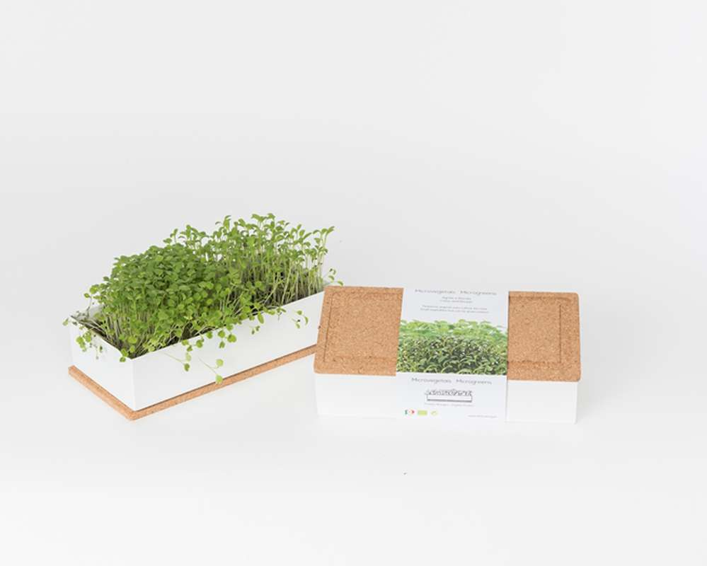 Grow Box Duo Roquette et Cresson, Life In a Bag (700 g)
