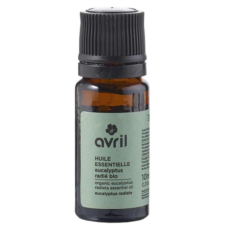 Huile essentielle d'eucalyptus radié BIO, Avril (10 ml)