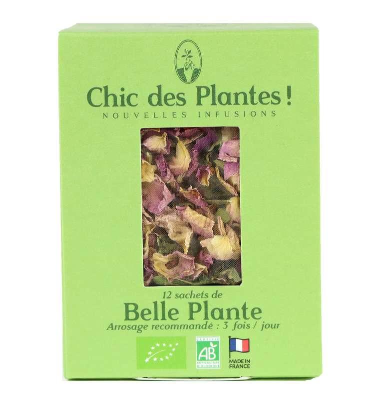 Infusion Belle Plante Détox BIO, Chic des Plantes (12 sachets)