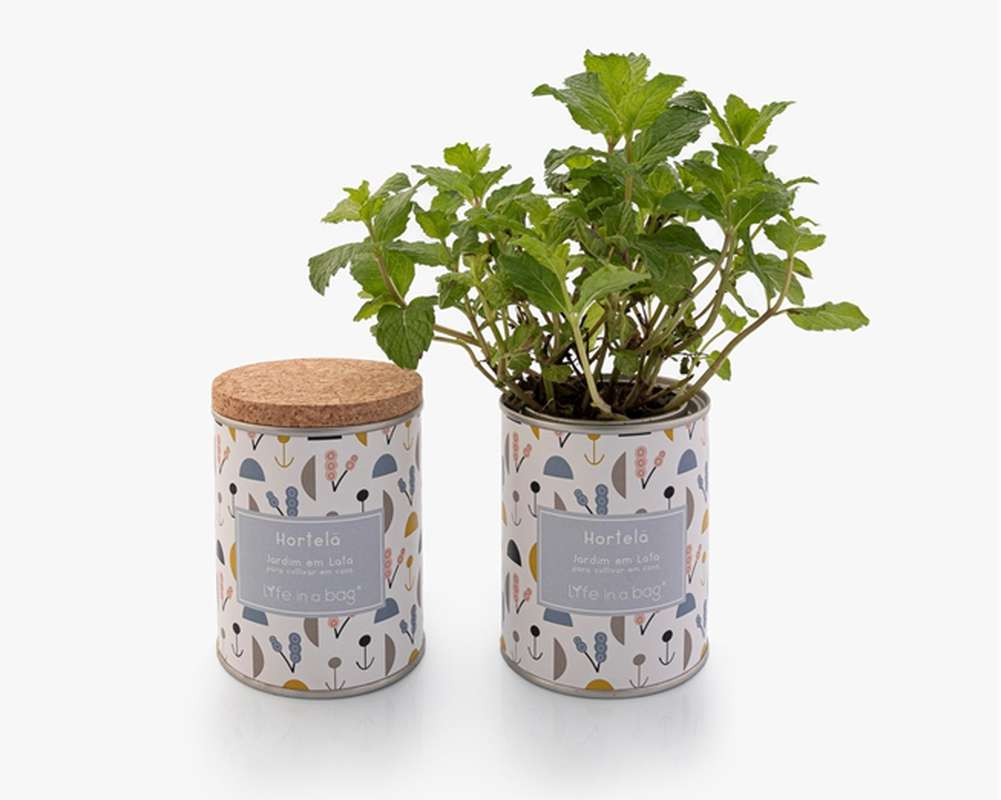 Jardin en boîte Modern Menthe, Life In a Bag (210 g)