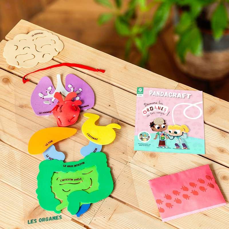 Kit éducatif Explore Les Organes du corps humain 3-7 ans, Pandacraft