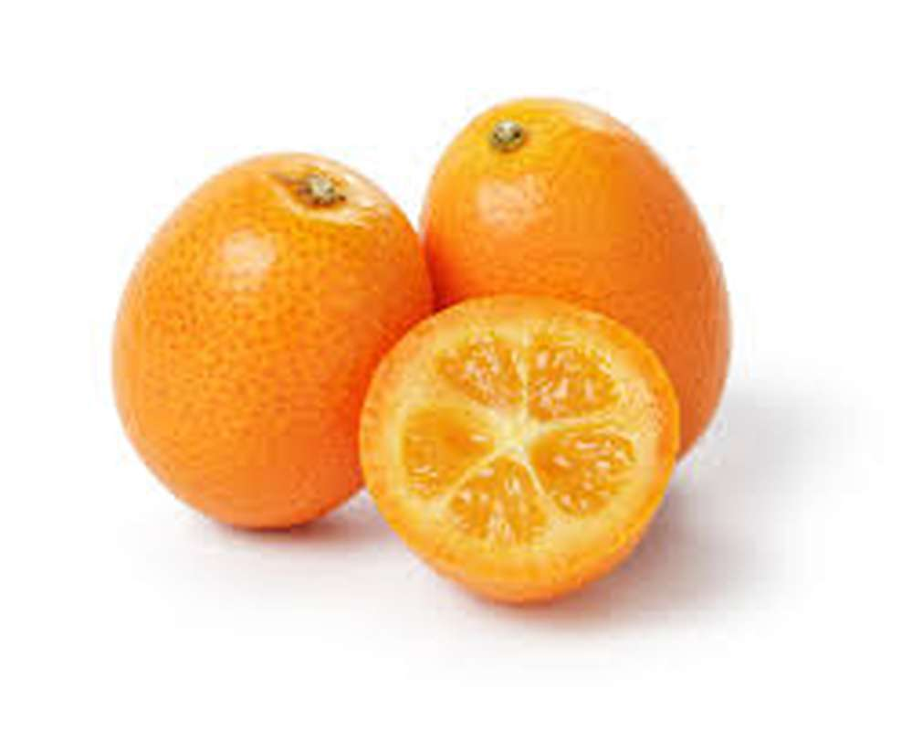 Kumquat, Afrique du Sud