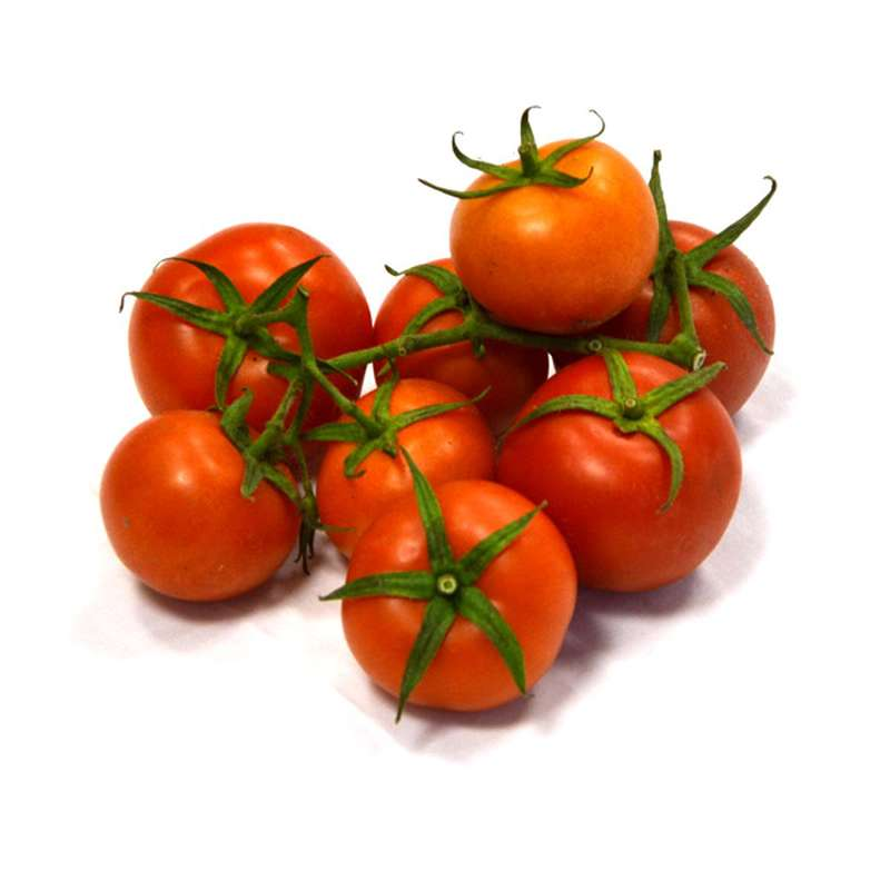 Tomates rondes grappes BIO, France