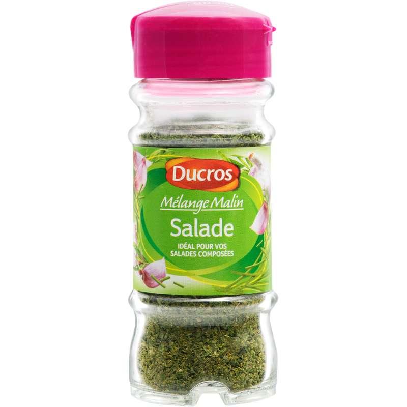 Assaisonnement pour salades Mélange Malin, Ducros (18 g)