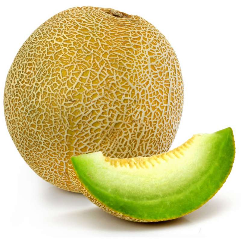 Melon galia (calibre moyen), Espagne