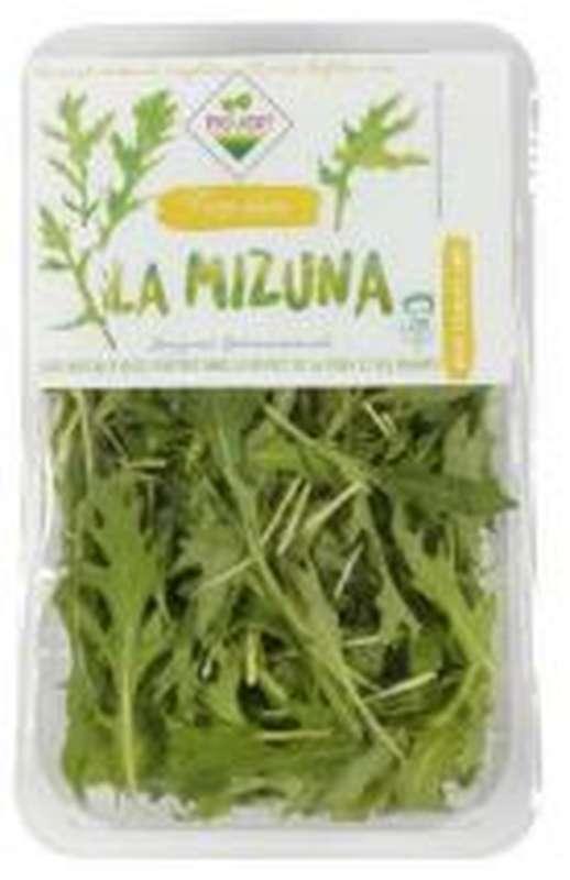 Mizuna (125 g), France