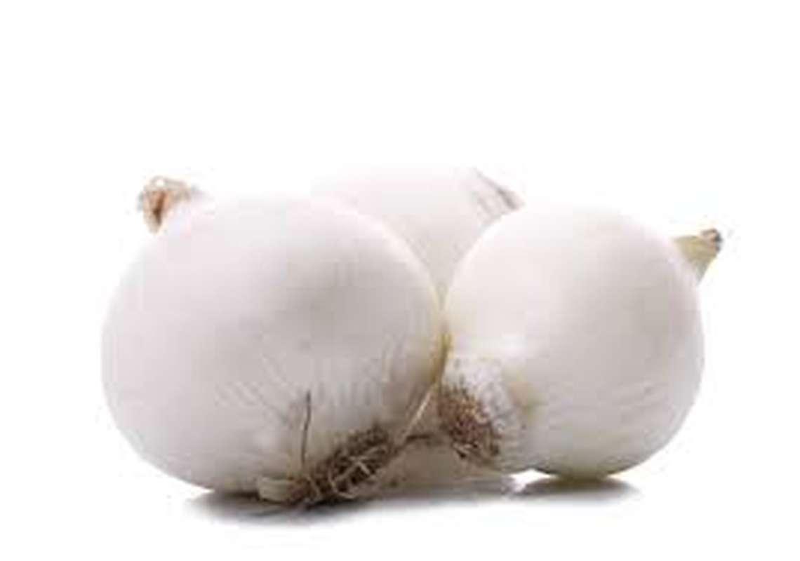 Oignon blanc (gros calibre), Australie