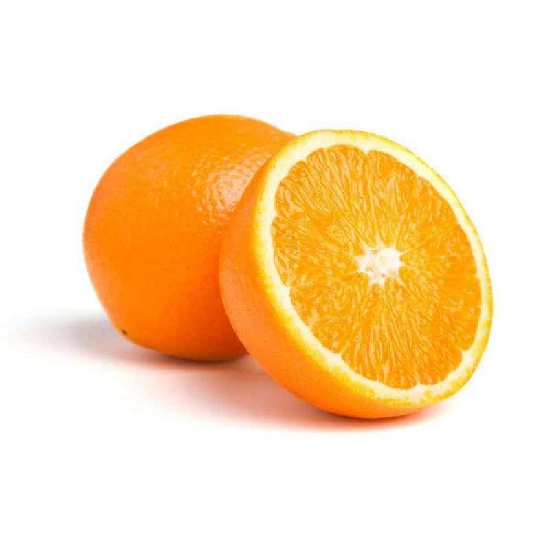 Orange de table Socculente extra (gros calibre), Espagne