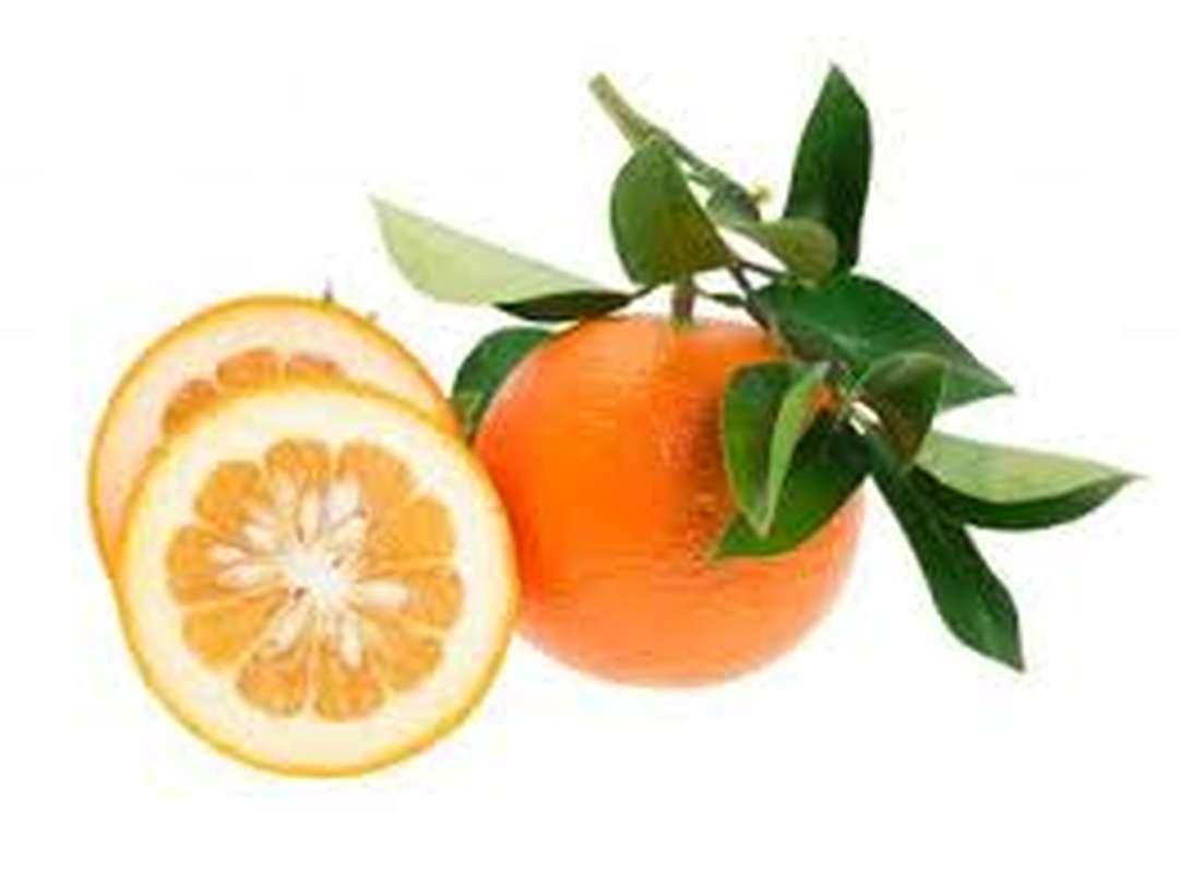 Orange amère BIO, Espagne