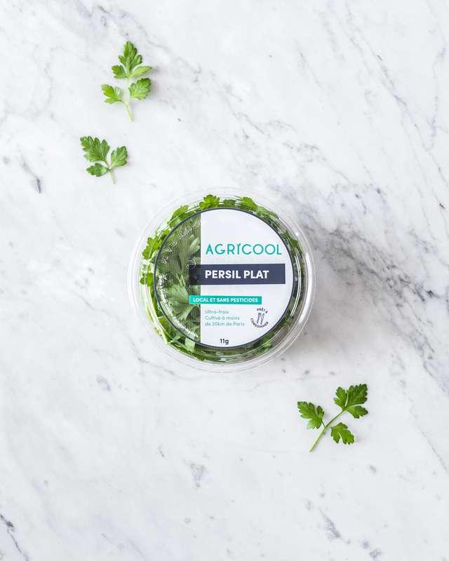 Persil plat ultra-local et sans pesticides, Agricool, France