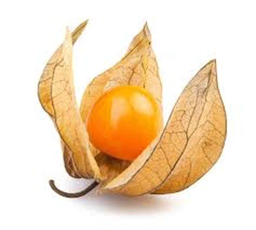 Physalis (environ 100 g), Colombie