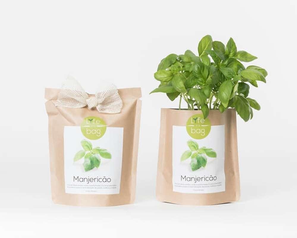 Grow Bag Basilic, Life In a Bag (300 g)