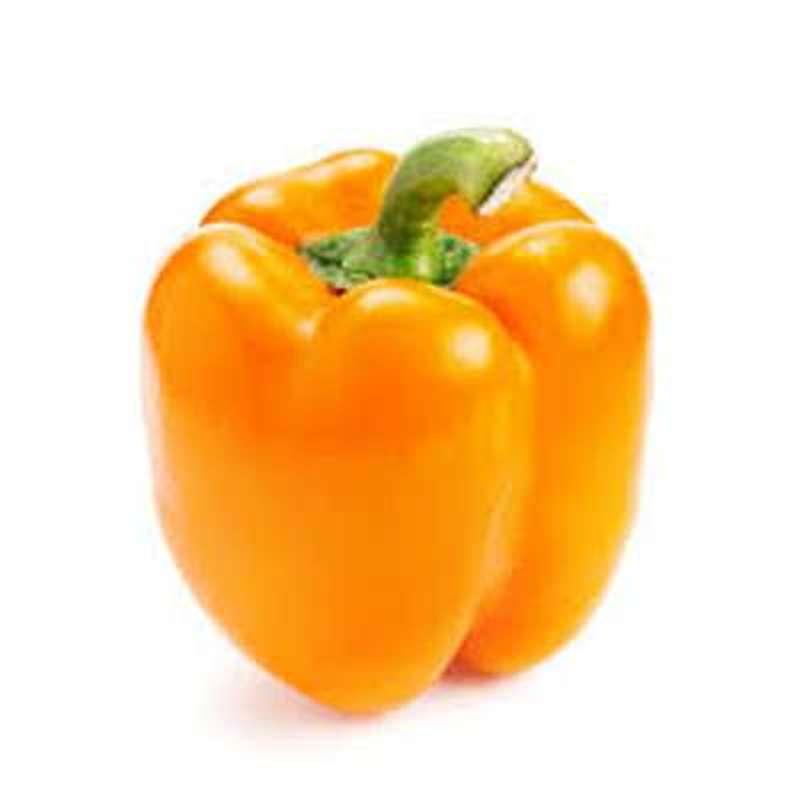 Poivron orange, Belgique