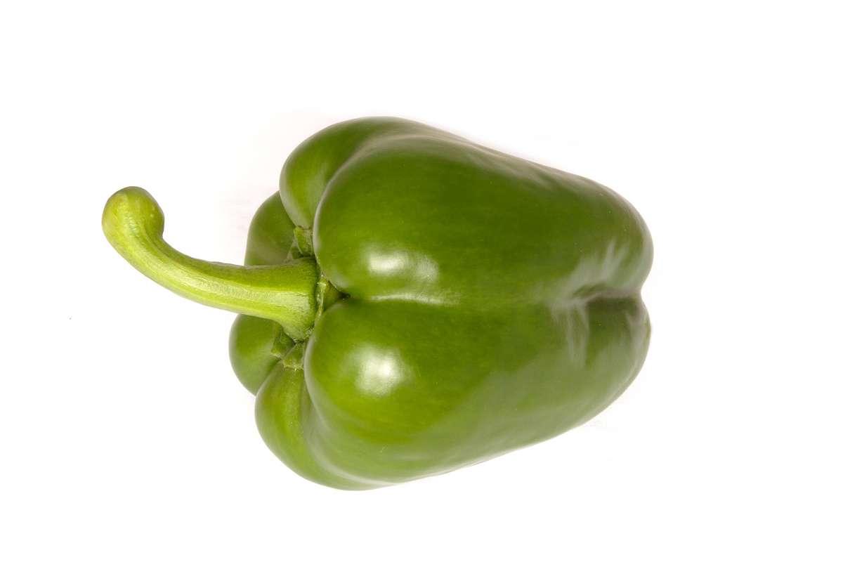 Poivron vert BIO (petit calibre), Espagne