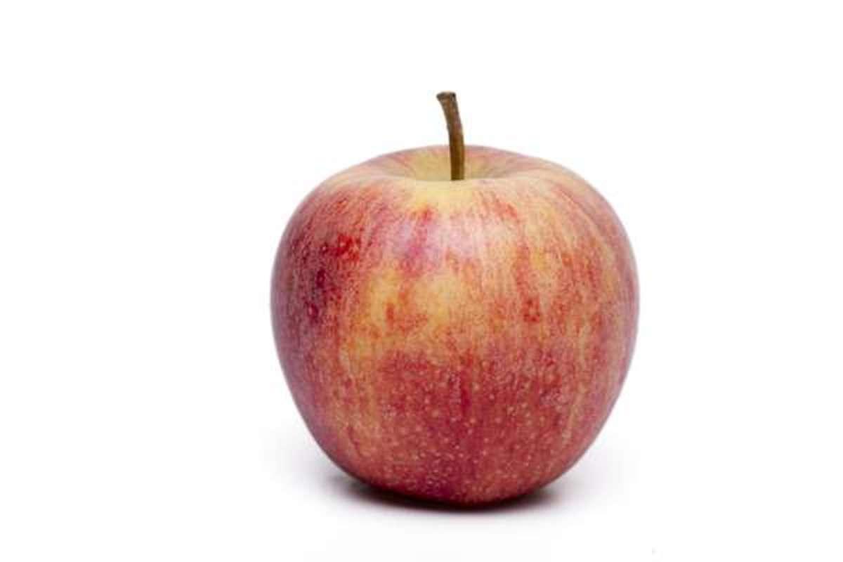 Pomme bicolore Gala BIO (petit calibre), France