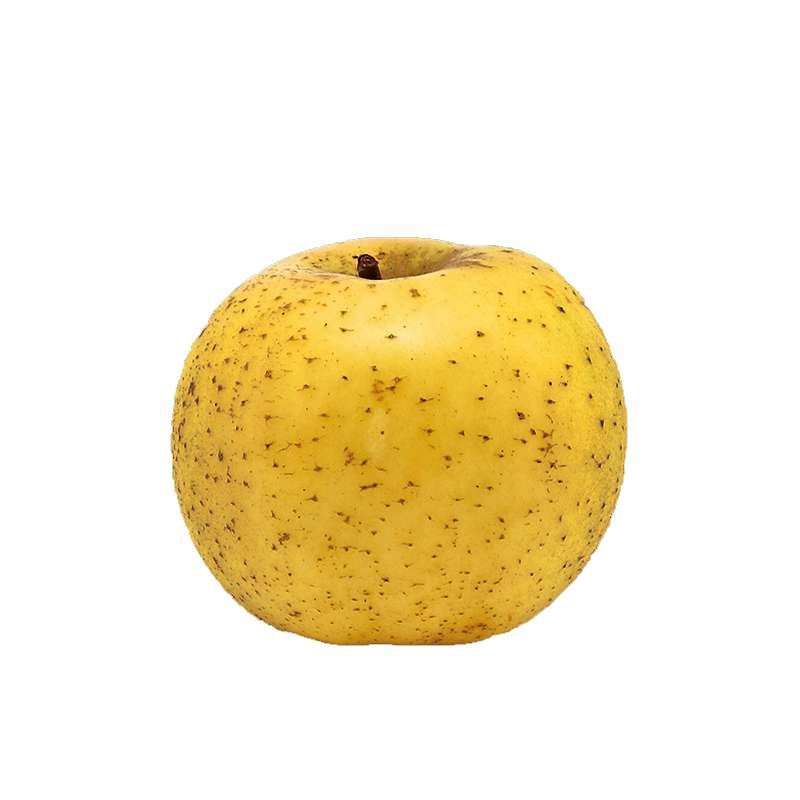 Pomme Chanteclerc (calibre moyen), France