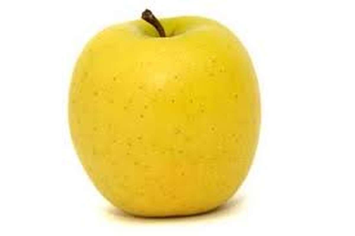 Pomme Golden, France