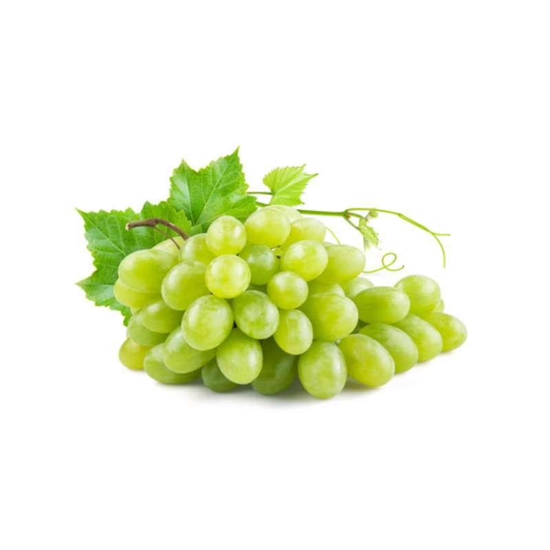 Raisin blanc Exalta de Provence BIO, France