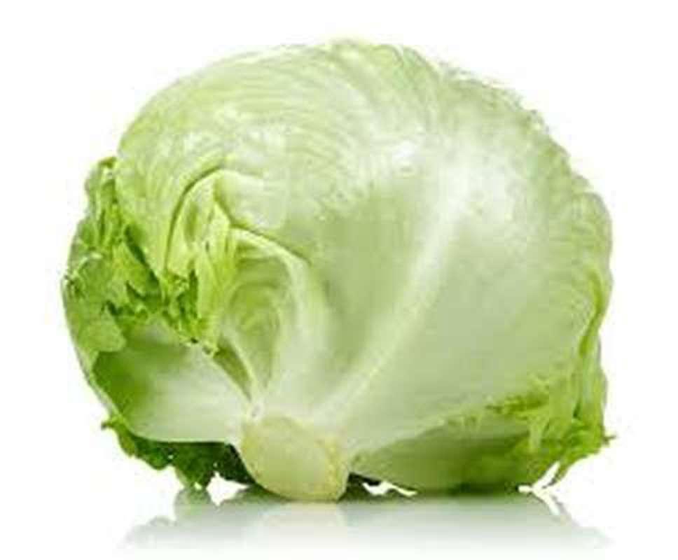 Salade Iceberg BIO (calibre moyen), France